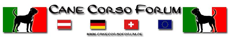 Cane Corso Forum